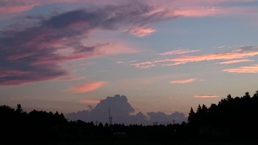 日常:新しい朝。今日も1日が始まりました。