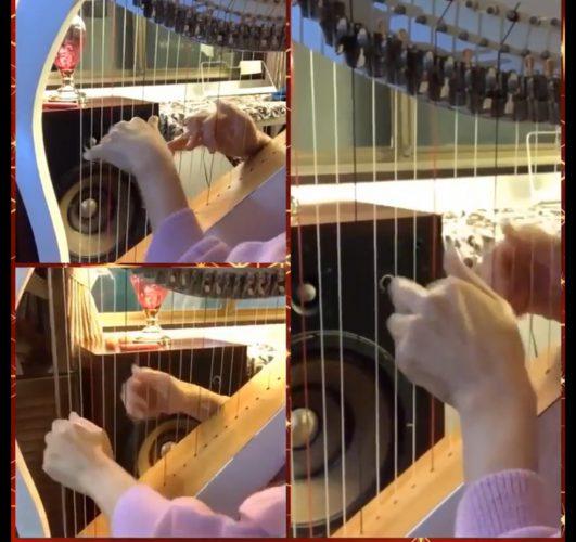 皆で弾きたい冬の曲 やさしいハープトリオ冬の曲集より ジングルベル (ハープ動画)