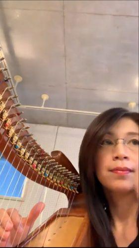 レバーハープ楽譜のEasy版 No.47ブラック・イズ・ザ・カラー ショート動画アップしました