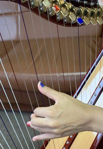 レバーの青色、赤色 応急処置 マニキュア編とハープ弾きのネイル
