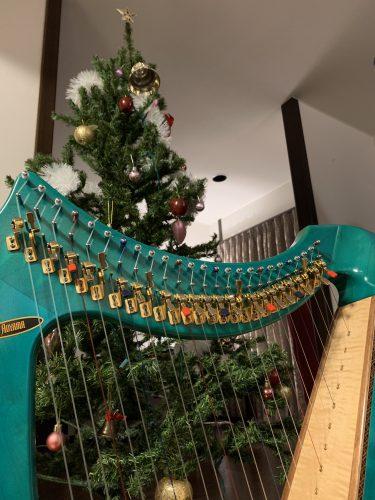 日常 クリスマスツリーを中へ移し、サウルハープと一緒にショート動画を撮ってみました。