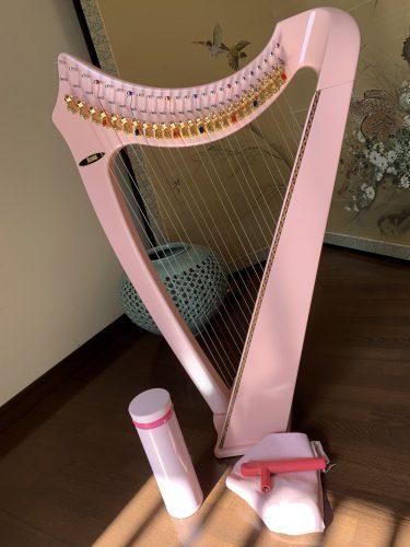 25弦のレバーハープで弾くルパン三世のテーマ 小型ハープ楽譜より 初登場サウルのピンクちゃん
