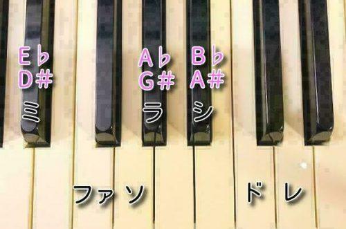 レバーハープの調弦で迷うチューナー表記 異名同音はこれで解決