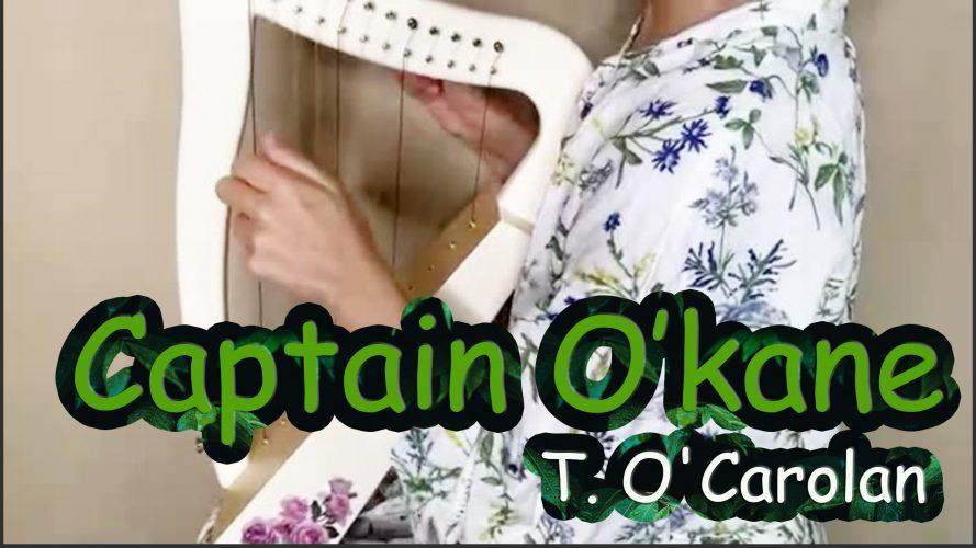 12弦のベイビーハープ動画 オカロランのCaptain O'kane