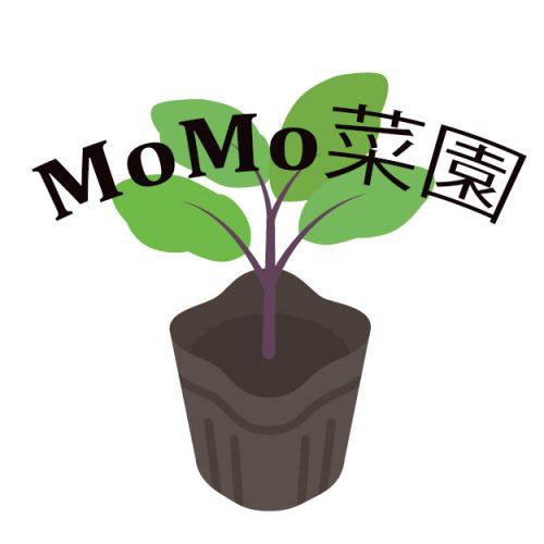 MoMo菜園始動